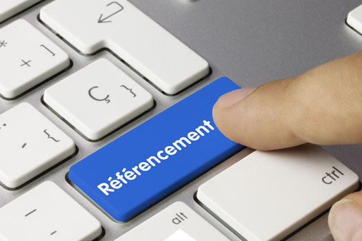 REFERENCEMENT et RESULTATS